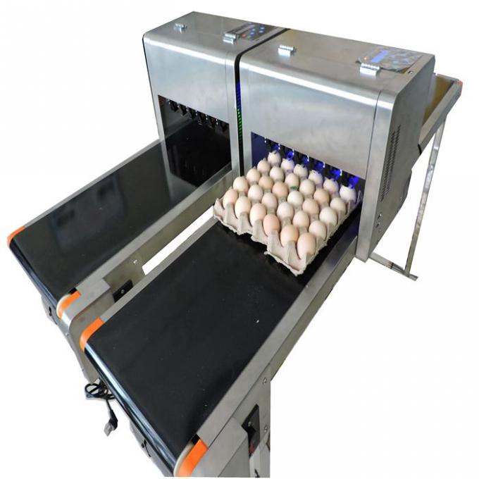 Easy Operation Egg Laser Batch Coding Machine With Thermal Foam Type Nozzle