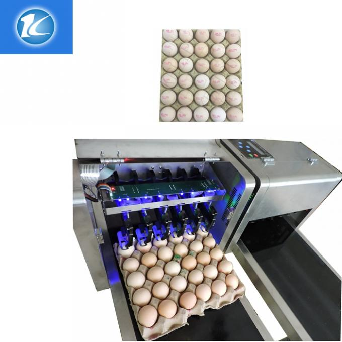 High Resolution Egg Printing Machine / Date Code Printing Machine
