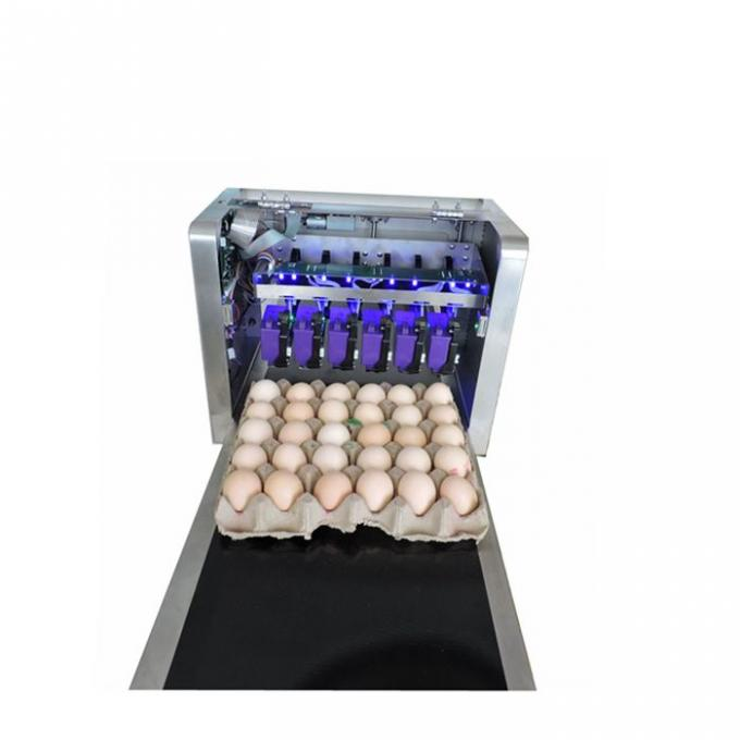 High Tech Carton Coding Machine Eggs Number Inkjet Printer With Solvent For Egg Supplier