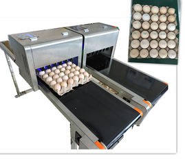 China High Output Egg Batch Code Stamping Machine With Low Maintenance Costs supplier