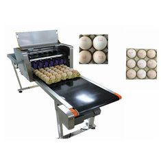 China Smart Egg Industrial Inkjet Printing Machines Can Print 120000 Eggs With Six Ink supplier