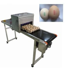 China 12V 4A Eggs Continuous Inkjet Printer , High Speed Inkjet Date Code Printer  supplier