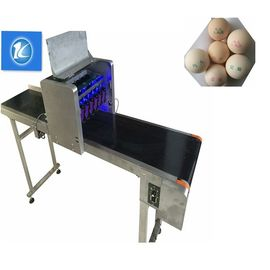 China Small Character Egg Thermal Inkjet Printer With Unique Nozzle Alignment Feature supplier