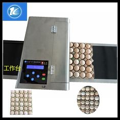 China Quality Assure Best Quality Egg Inkjet Printer / Blue Ink Printing Machine / Red Edible Ink Printing Equipment supplier