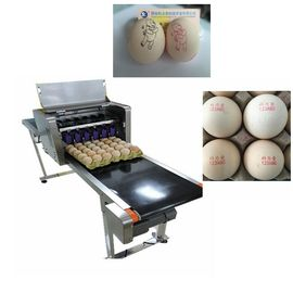 China High Tech Carton Coding Machine Eggs Number Inkjet Printer With Solvent For Egg Supplier supplier
