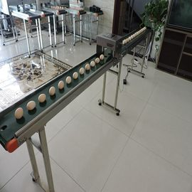 China Need Small Size Egg Stamping Machine For Batch Number / Date / Time supplier