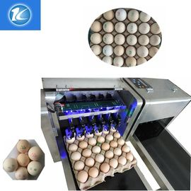 China Egg Multicolor Color Continuous Inkjet Printer With Food Edible Ink supplier