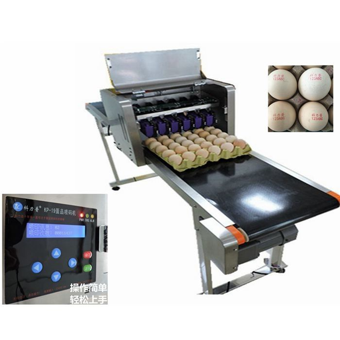 Automatic Egg Date Stamp Machine Continuous Inkjet Printer For Food Industry