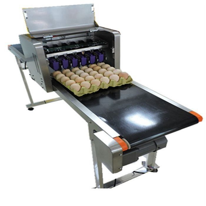 China High Efficiency Egg Date Stamp Machine Small Format Spraying Supplier