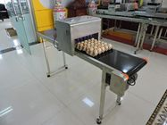Easy Operation Egg Batch Number Printer , Expiry Date Printing Machine For Eggs