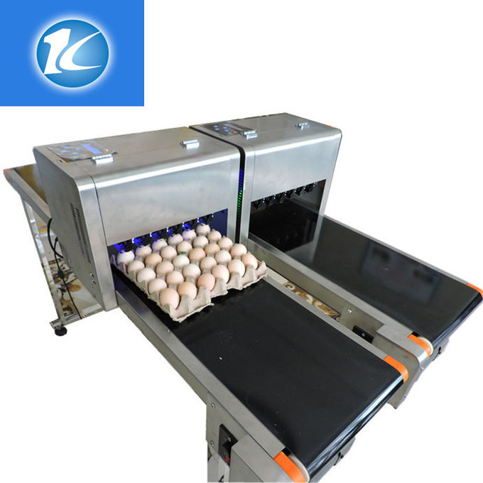 High Efficiency Egg Date Stamp Machine Small Format Spraying