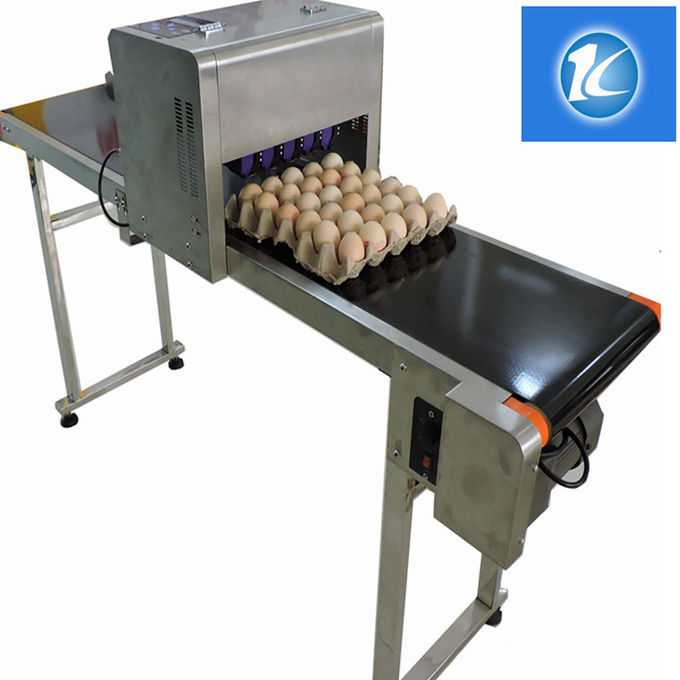 Nozzle Thermal Foam Type Egg Printing Machine With Six Heads And SGS Guarantee