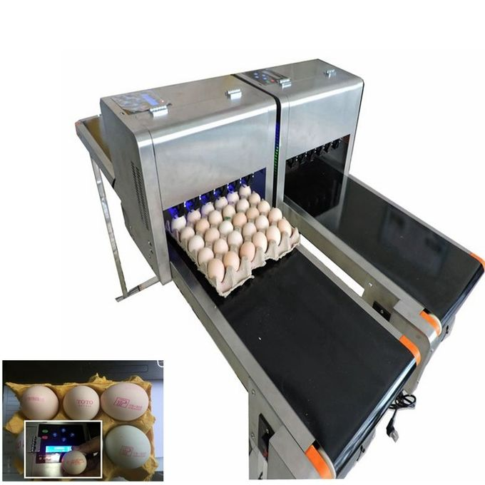 High Speed Dates Or Logo Egg Printing Machine With Computer Control