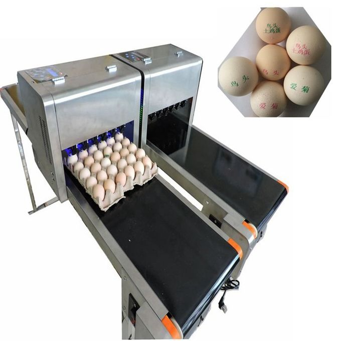 Full Automatic  Egg Continuous Inkjet Printer With 600 DPI Printing Resolution