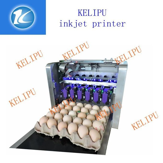Printing 120000 Eggs / H Egg Stamping Machine For Bar Code Or Graphic LOGO