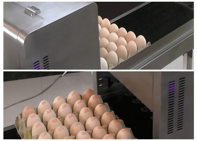 Egg Multicolor Color Continuous Inkjet Printer With Food Edible Ink