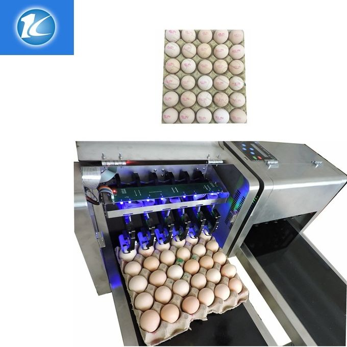 Number Logo Date Code Printing Machine / Egg Jet Printer Automatic Operation
